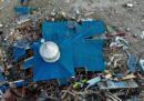 I danni in Indonesia visti dall'alto