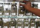 Il Michigan ha legalizzato la marijuana