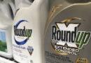 Monsanto dovrà risarcire con 80 milioni di dollari un uomo che aveva sviluppato un tumore dopo aver usato l'erbicida Roundup