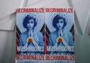 Denver ha depenalizzato l'uso e il possesso dei funghi allucinogeni