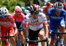 Cesare Benedetti ha vinto la 12ª tappa del Giro d'Italia, Jan Polanc è la nuova maglia rosa