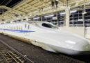 Il blackout che lo scorso mese fermò la circolazione dei treni in un'isola del Giappone fu causato da una lumaca