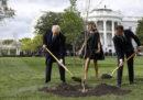 L'albero piantato da Macron e Trump è morto, scrivono alcuni giornali francesi