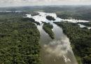 Il Brasile sta disboscando l'Amazzonia molto più in fretta di prima