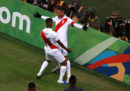 Brasile e Perù giocheranno la finale di Copa America