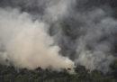 I leader sudamericani si riuniranno per discutere di come proteggere la foresta amazzonica, il prossimo 6 settembre