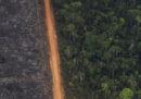 """In Brasile per i prossimi 60 giorni saranno vietati gli """"incendi controllati"""""""