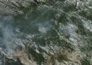 Il presidente brasiliano Jair Bolsonaro ha ordinato all'esercito di intervenire per spegnere gli incendi in Amazzonia