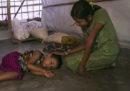 Che ne è stato dei rohingya