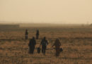 Le foto dei curdi siriani che scappano da Ras al Ayn