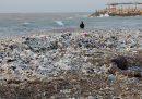 C'è un'area del mar Mediterraneo particolarmente in pericolo