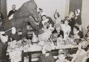 Feste in ospedale con strani cavalli