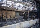 Decine di animali sono morti in uno zoo in Germania, in un incendio causato da lanterne volanti