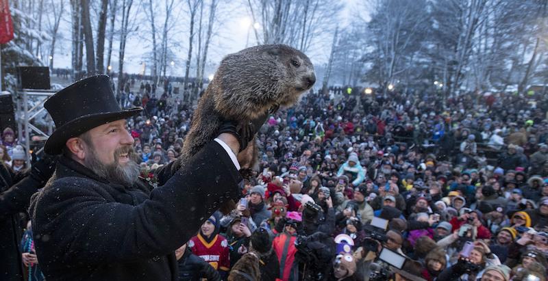 Oggi è il Giorno della marmotta - Il Post