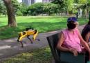A Singapore c'è un cane-robot che ricorda di mantenere le distanze nei parchi