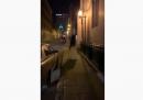 La polizia di Quebec City ha arrestato un ventenne in relazione all'uccisione di due persone nella notte di Halloween