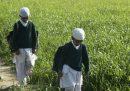 Lo stato indiano dell'Assam ha abolito tutte le scuole islamiche