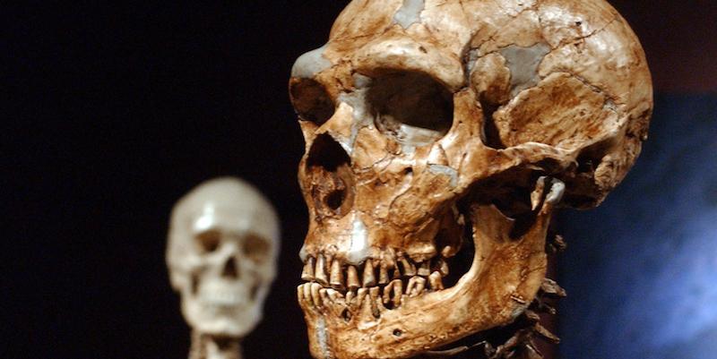 La vita delle donne di Neanderthal