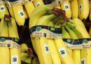 Perché acquistare prodotti equosolidali