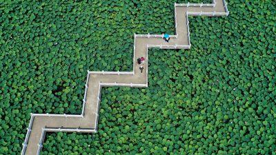 Contea di Anlong, Cina