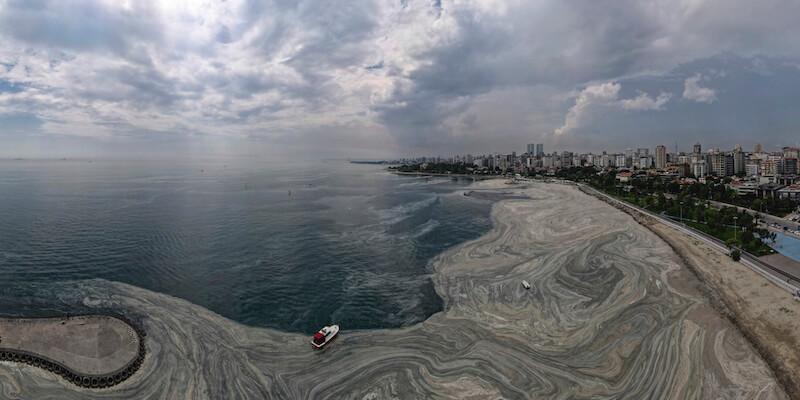 Il mare di Istanbul si è riempito di schiuma grigia