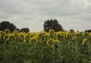 L'estate (di San Martino) che non c'è